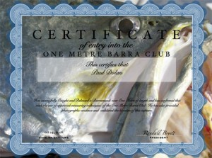 One Metre Barra Club Membership Certificate